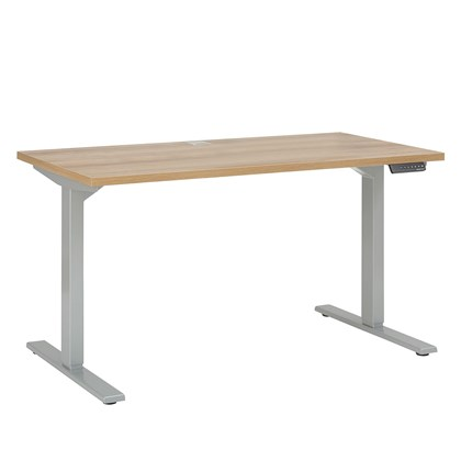 ARENA Adjustable desk